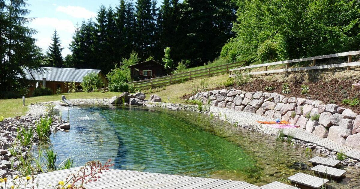 Piscine merlet paysagiste barembach pisciniste bas for Piscine 67
