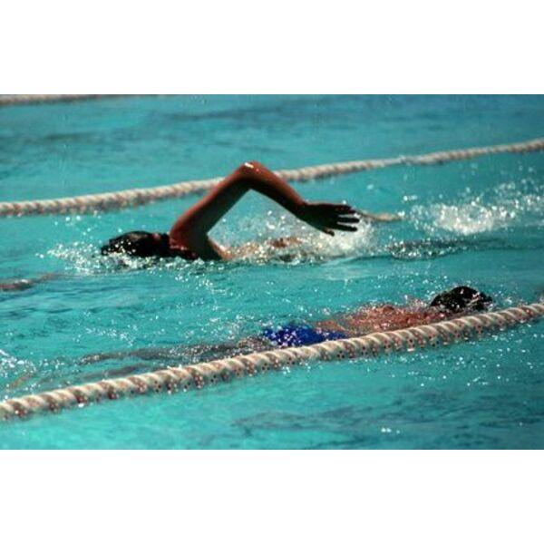 Mieux nager ensemble en respectant les autres nageurs for Piscine pour nager