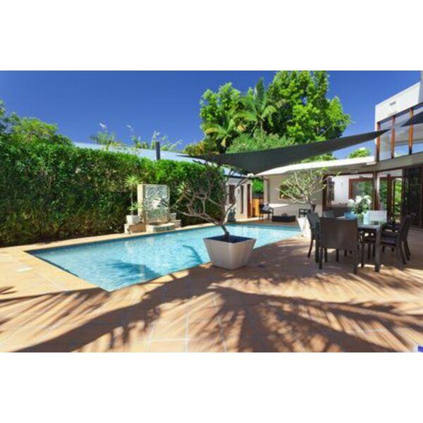 Mur v g tal palissade et pare vue pour une piscine l abri des regards - Par vue de jardin ...