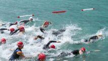 LEN Awards : deux nageurs français récompensés