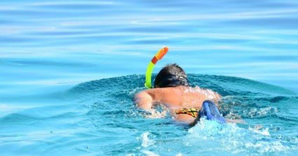 Nager le crawl avec des palmes et un tuba for Palmes pour piscine