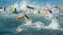 Open Swim Stars : Strasbourg et Lyon