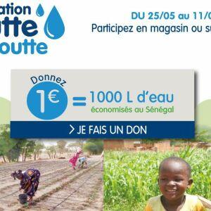 Faciliter l'accès à l'eau au Sénégal avec Irrijardin