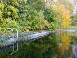 Quel emplacement pour une piscine naturelle ?