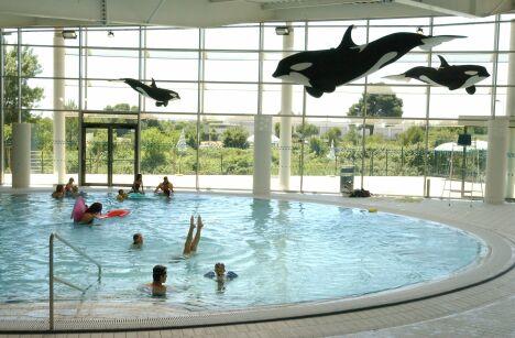 """Le bassin ludique de la piscine Amphitrite à Saint Jean de Vedas<span class=""""normal italic"""">© Montpellier Agglomération</span>"""