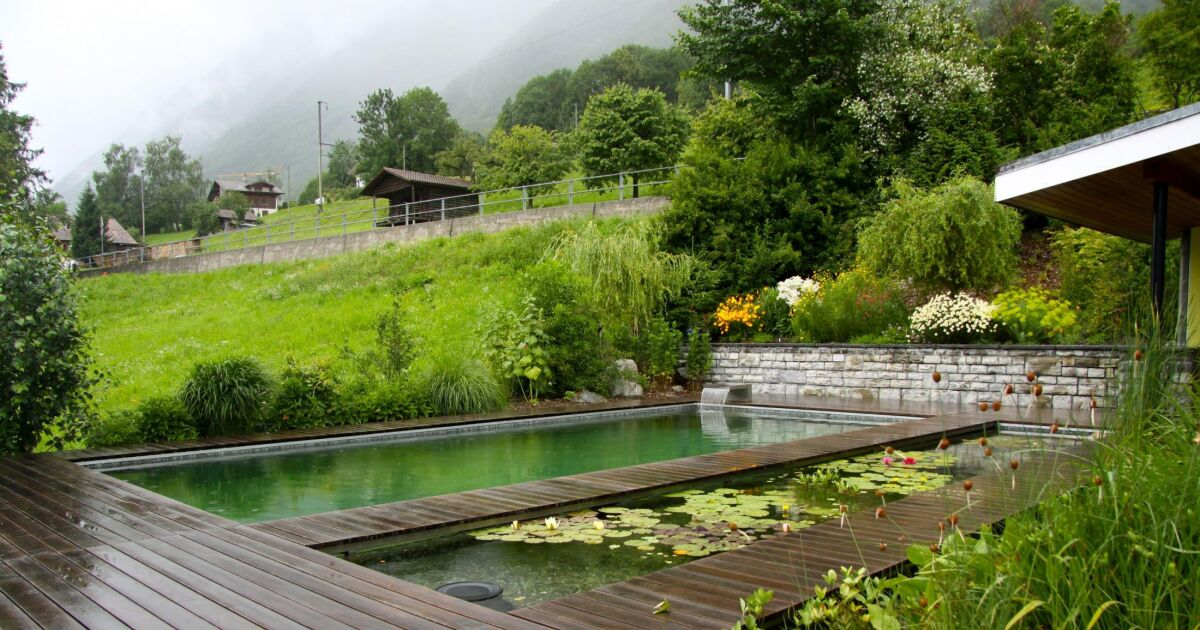 piscine naturelle avec lame d 39 eau bionova. Black Bedroom Furniture Sets. Home Design Ideas