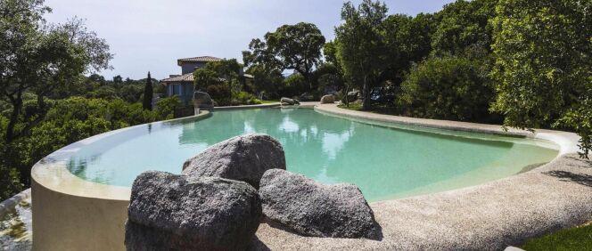 photos de piscines de forme libre piscine de forme libre vert turquoise. Black Bedroom Furniture Sets. Home Design Ideas