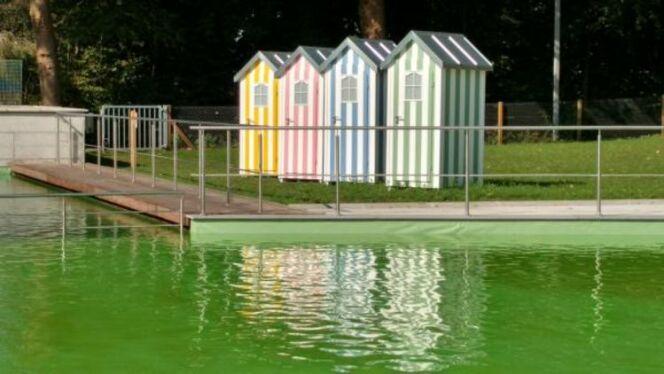 Piscine du Belvédère à Dour : une piscine naturelle écologique