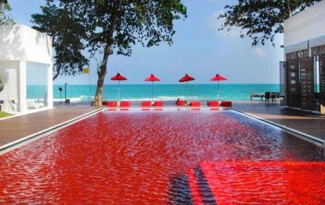 Piscine du Library Hotel, Koh Samui, Thaïlande © thelibrary
