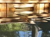 La piscine écologique : un bassin naturel