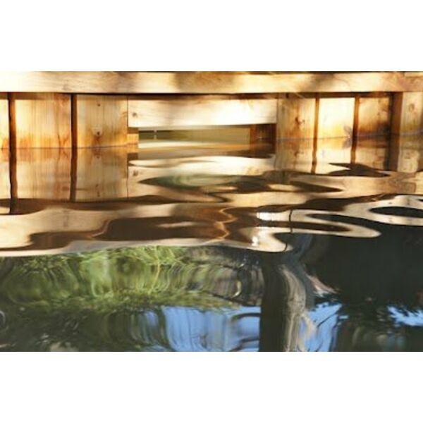 la piscine cologique un bassin naturel. Black Bedroom Furniture Sets. Home Design Ideas