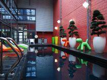 La piscine avec bassin en inox