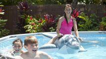 Krystal Clear par Intex : l'électrolyseur pour piscines hors-sol