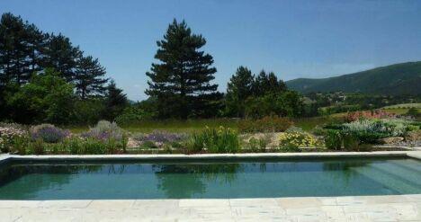 Piscine naturelle, filtre planté et jardin sec