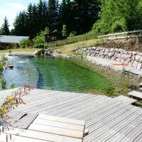 Piscine naturelle avec terrasse en bois BioNova