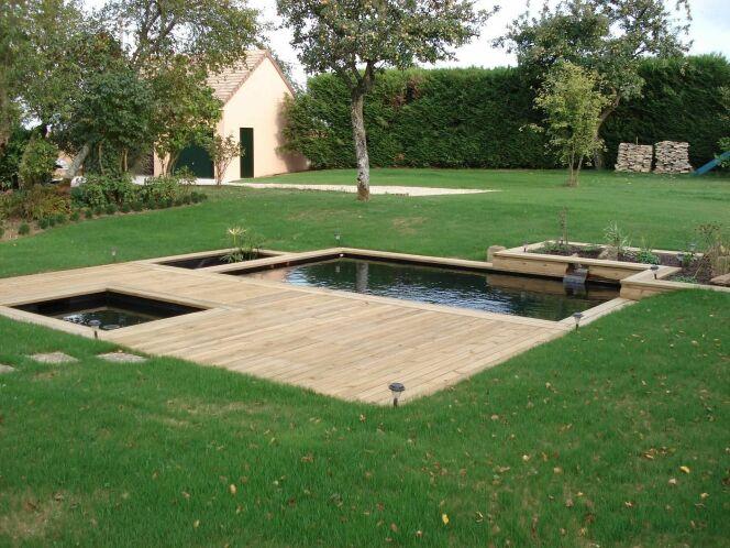 """Une piscine naturelle assure sa filtration grâce à différentes zones de filtrations naturelles comme la zone de lagunage.<span class=""""normal italic petit"""">© Patrick Lemaire Paysage</span>"""
