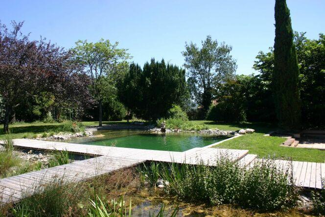 Reportage photos piscines naturelles cologiques ou for Plan piscine naturelle
