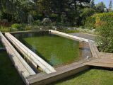 Le risque d'eutrophisation de la piscine naturelle