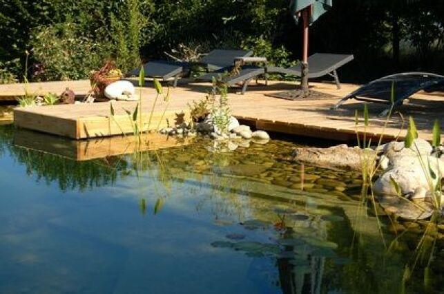 Acheter votre piscine naturelle en kit peut vous permettre de réaliser bien des économies.