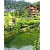 Piscine naturelle en montagne BioNova