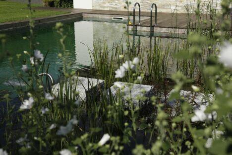 "Piscine naturelle et plantes<span class=""normal italic petit"">© Living-Pool de BIOTOP - www.baignade-ecologique.com</span>"
