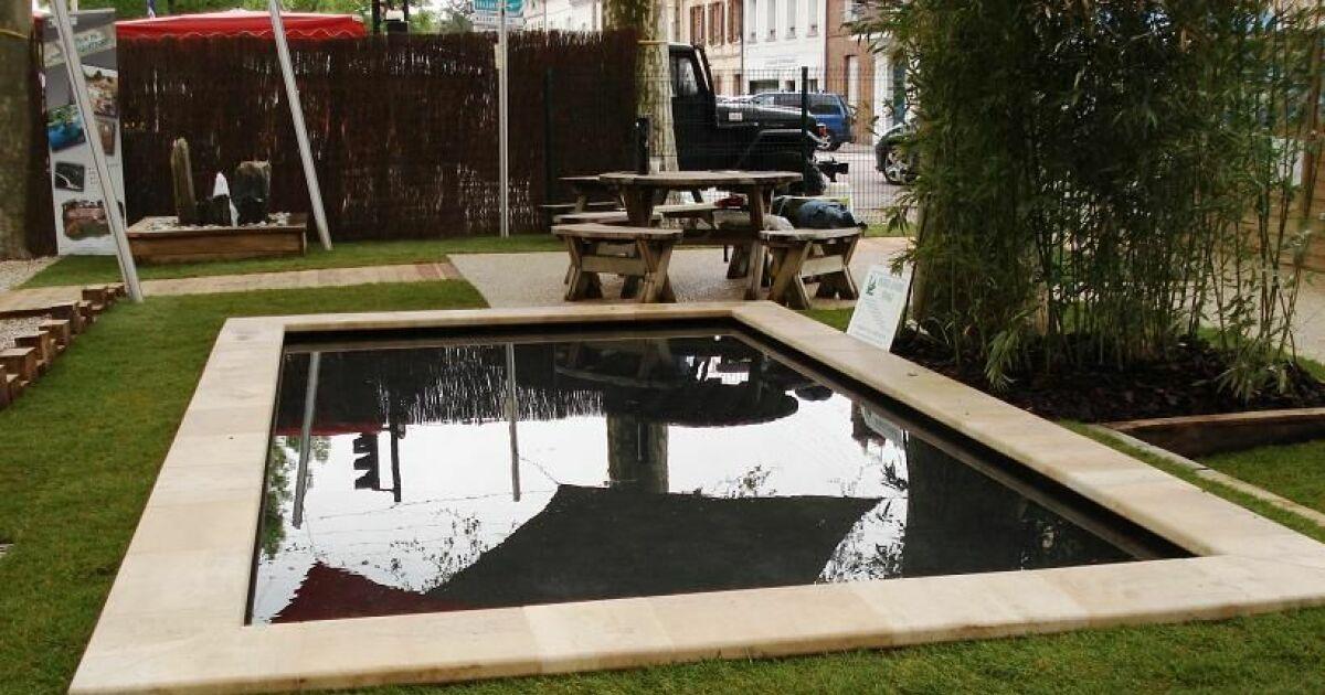 Bassins de baignade biologiques et cologiques for Taille standard piscine rectangulaire