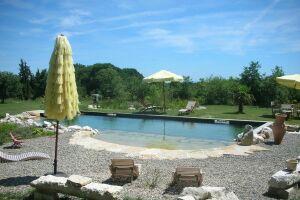 Piscine naturelle rectangulaire avec plage d'accès BioNova