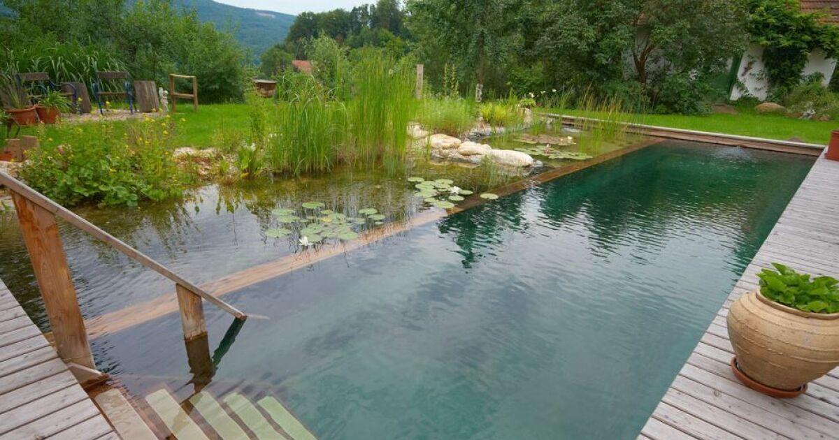 Article - Piscine naturelle ou biologique : pour une baignade ...