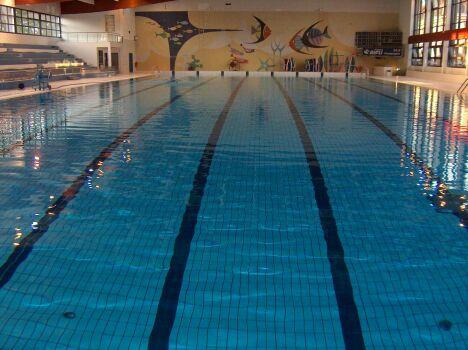 """La piscine olympique est équipée de plusieurs lignes d'eau<span class=""""normal italic petit"""">DR</span>"""