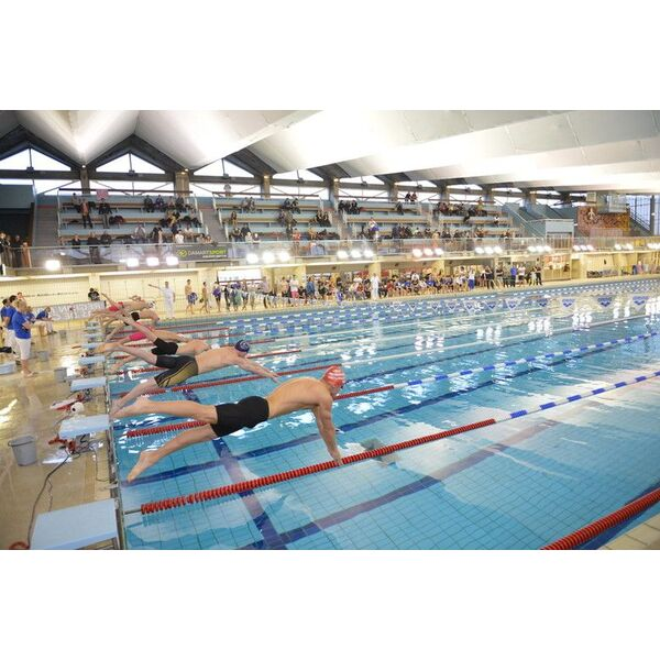 Piscine olympique marx dormoy lille horaires tarifs for Piscine a lille