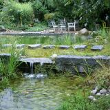 Piscine paysagère avec petite cascade BioNova