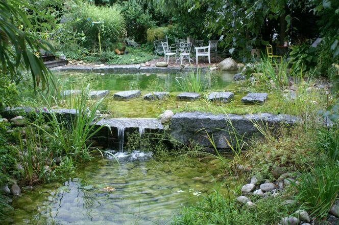 Photos des plus belles piscines paysag res piscine for Piscine moderne avec cascade