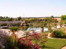 Photos des plus belles piscines paysagères