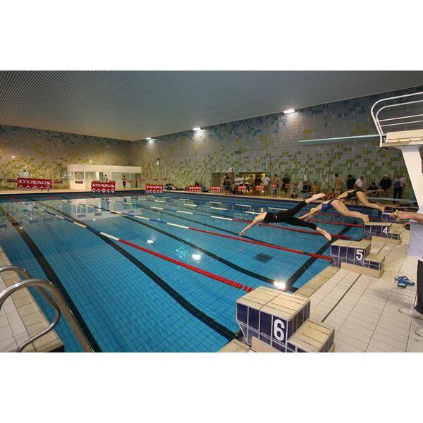 piscine du palais des sports orl ans horaires tarifs