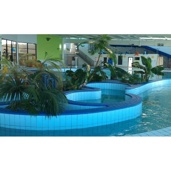 Piscine chauffe pau 31 for Piscine 31