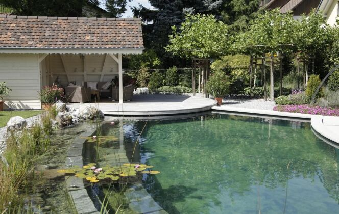 Piscine naturelle de charme totalement intégrée dans son environnement © Living-Pool de BIOTOP - www.baignade-ecologique.com