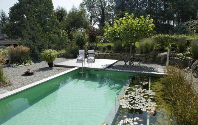 Piscine naturelle dans un jardin de charme © Living-Pool de BIOTOP - www.baignade-ecologique.com