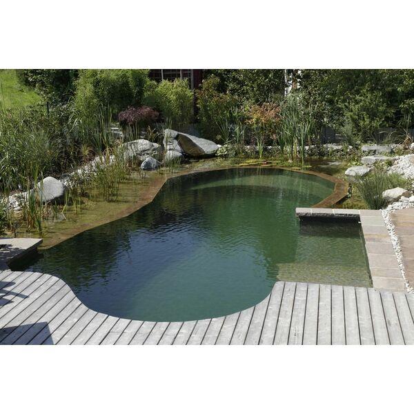 Piscines naturelles et bassins de baignade cologique biotop for Petite piscine naturelle