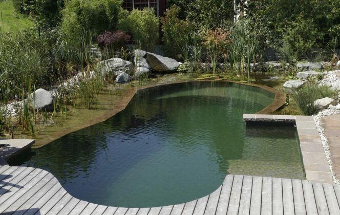 Piscine naturelle avec margelles en bois © Living-Pool de BIOTOP - www.baignade-ecologique.com