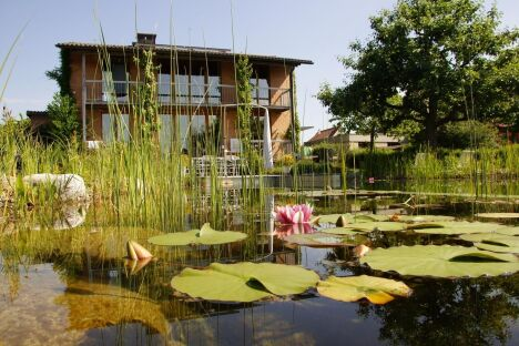 "Piscines naturelles et bassins de baignade écologique BIOTOP<span class=""normal italic petit"">© Living-Pool de BIOTOP - www.baignade-ecologique.com</span>"