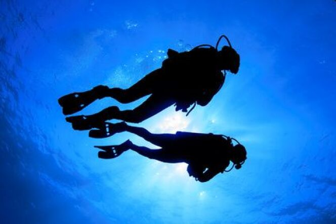 """Plongée sous-marine : les paliers de décompression<span class=""""normal italic petit"""">DR</span>"""