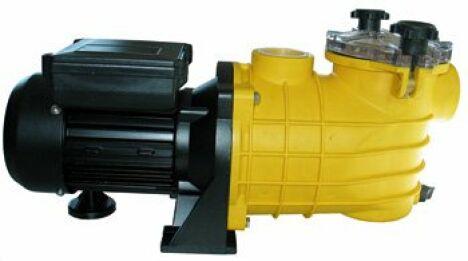 """Pompe Premium, pompe centrifuge auto-amorçante avec pré-filtre incorporé<span class=""""normal italic petit"""">© Mareva - Piscines & Filtrations</span>"""