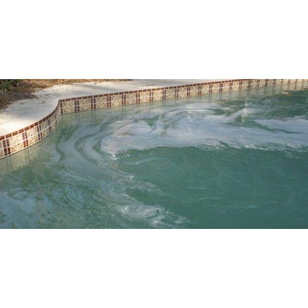 pourquoi l eau de ma piscine est elle devenue verte