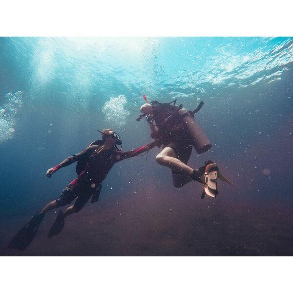 Cours de plongée tarifs