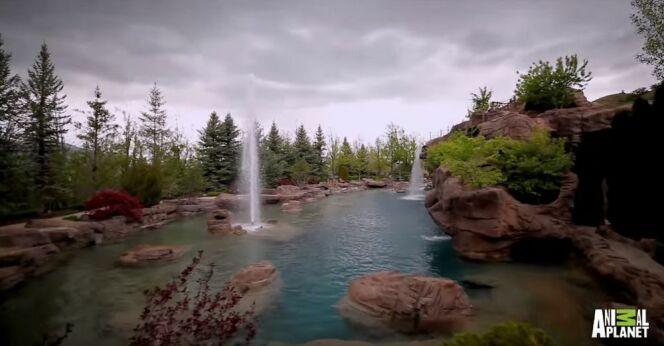 Profiter d'une vue sur cette piscine après la baignade