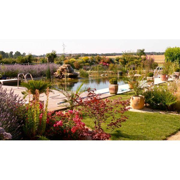 Prot ger les plantes d une piscine naturelle en hiver for Plante en hiver