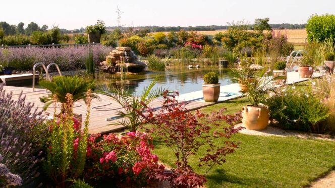 Protéger les plantes d'une piscine naturelle en hiver