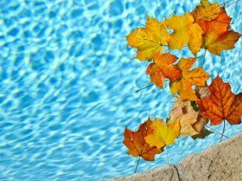 Protéger sa piscine en automne