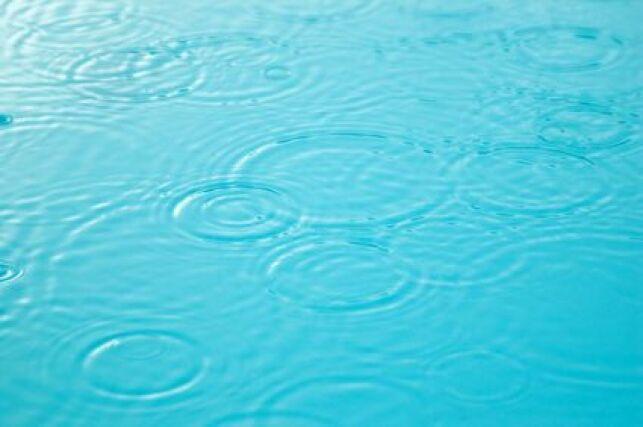 Purificateur d'eau de piscine