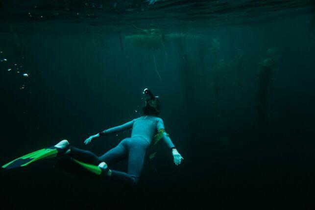 Quelle combinaison pour la nage en mer ?